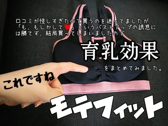 モテフィット レポ ブログ 効果 写真 てんちむ ステマ