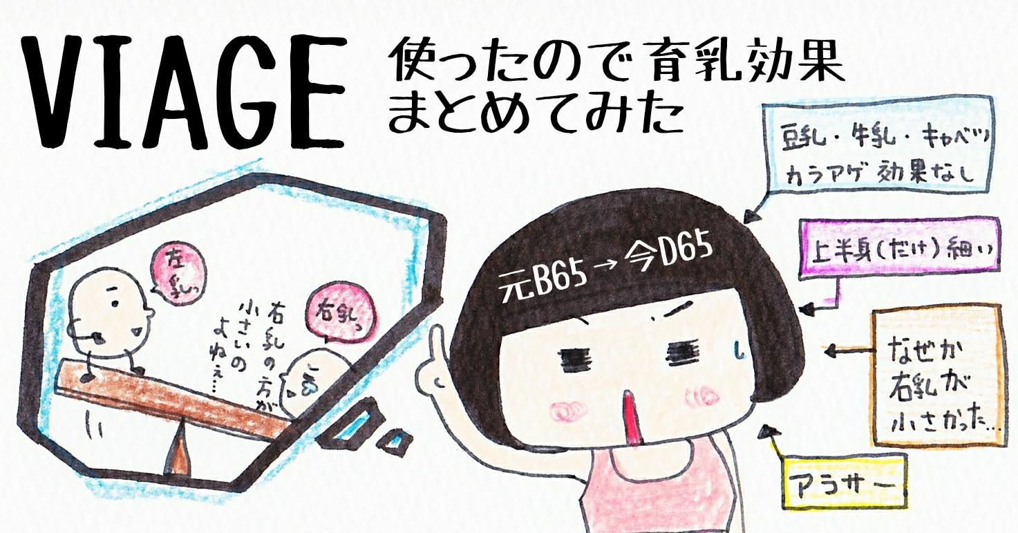 VIAGE Bカップ B65 育乳 写真 ブログ レポ